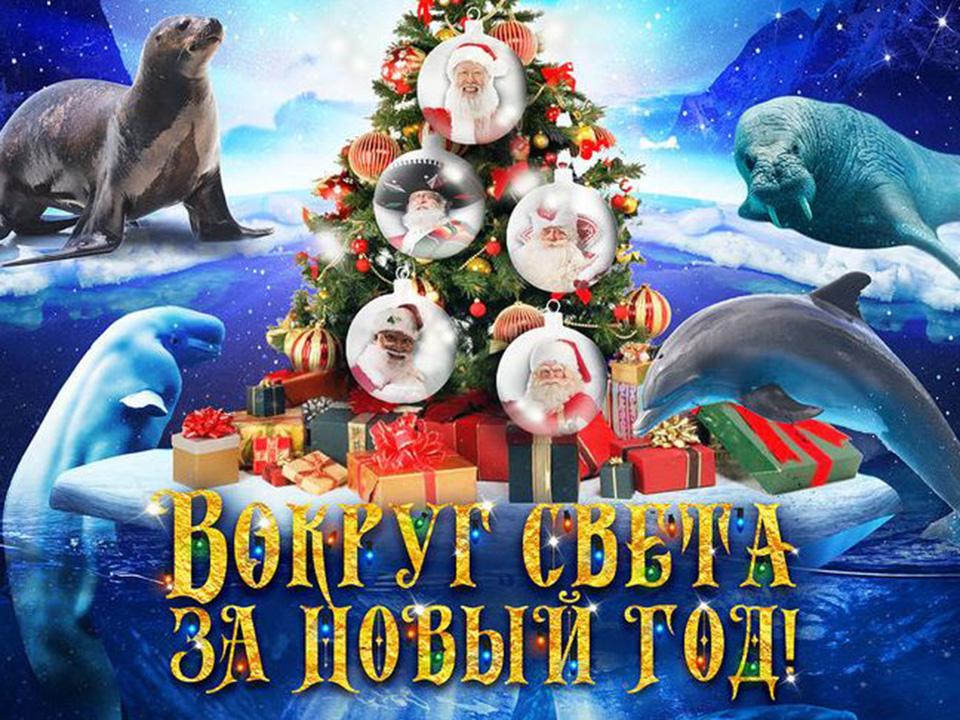 Новогоднее шоу в Москвариуме на ВДНХ